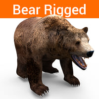 Bear Rigged