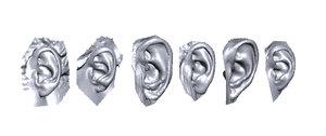 3D ears scan model