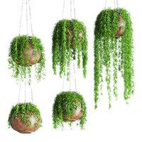 hanging plants pots 5 model