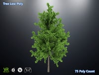 3D optimized tree model