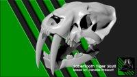 SaberTooth Tiger Skull [For 3D Print]