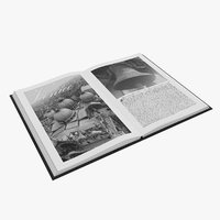 3D book open venice