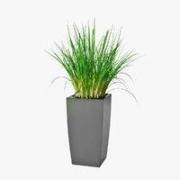 small plant 06