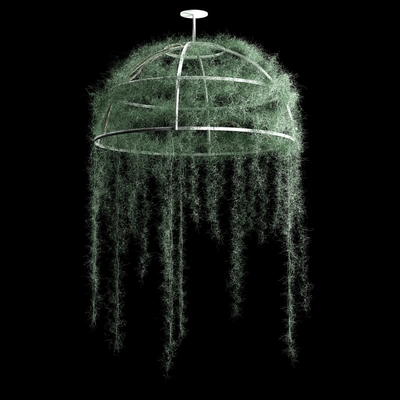 spanish moss dome 3D model