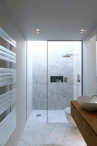 3D corona night day bathroom