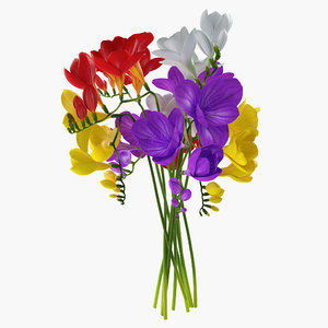freesia bouquet 3D model