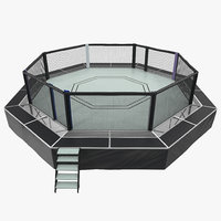 fighting octagon arena 3D model