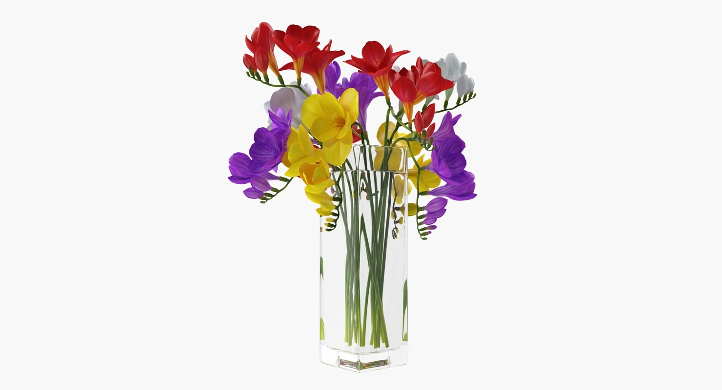 3d freesia flowers bouquet vase turbosquid 1255555 3d freesia flowers bouquet vase izmirmasajfo