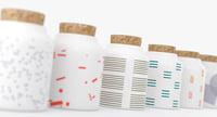 3D white seed jars model