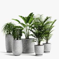 plants set 04 3D model