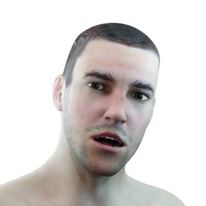 male head rigged 3D