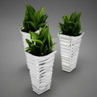 plant model