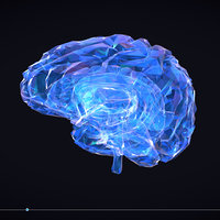 Low Polygon Art Medical Brain Roentgen VR / AR / low-poly 3D model