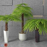3D houseplant 5