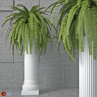 3D houseplant 6 model