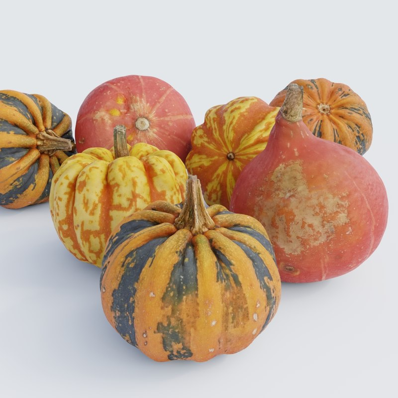 photoscanned pumpkins 3D model