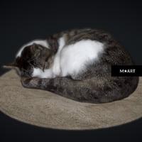 cat warm 3D model