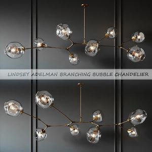 adelman lindsey branching 3D