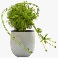 vase 29 flycatcher flower 3D model