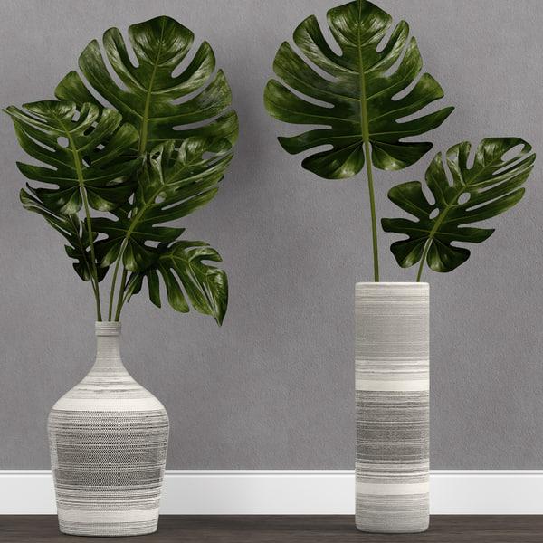 3D model monstera plant