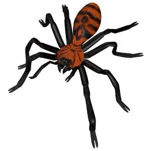 tarantula tiger rump 3D model