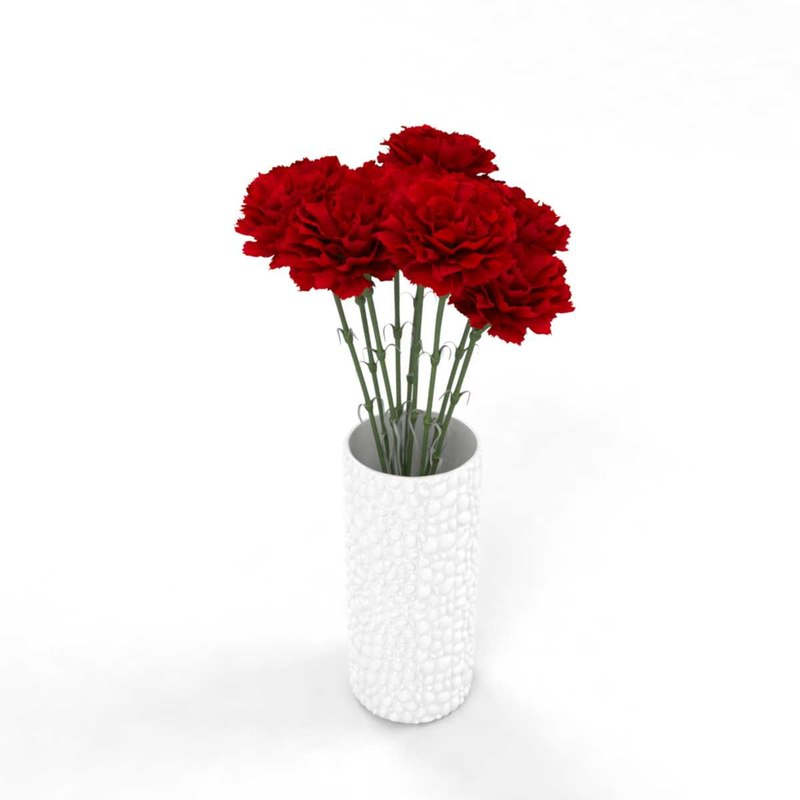 3D model carnation flower realistic