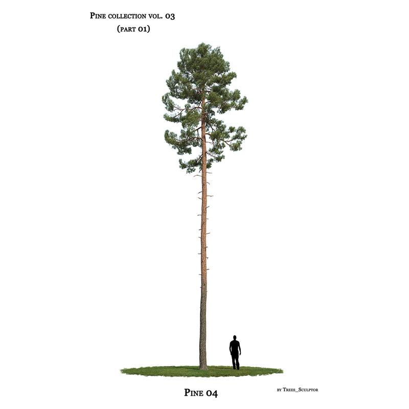 3D model pine-tree tree