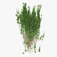 3D ivy pbr branches model