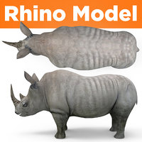 3D realistic rhino