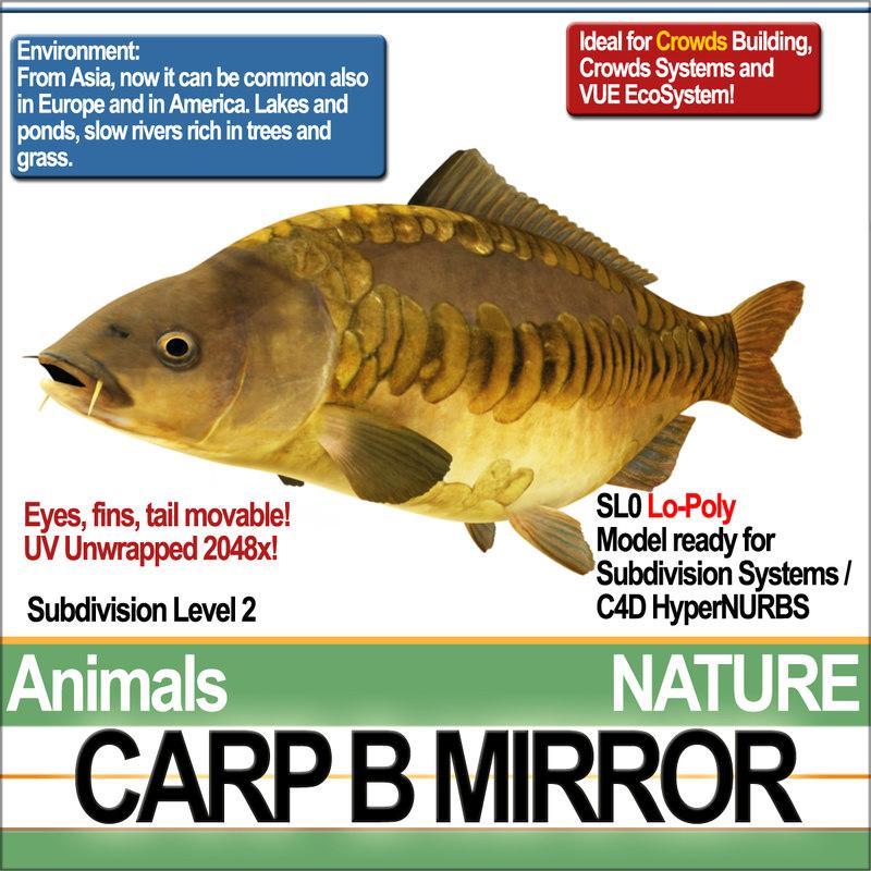 3D model carp b mirror