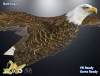 3D optimized gaming bald eagle