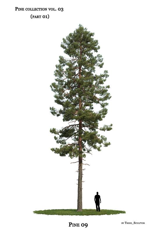 pine-tree tree model
