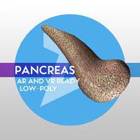 3D low-poly pancreas ready vr