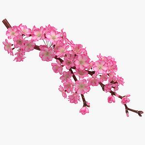 3D realistic sakura branch model