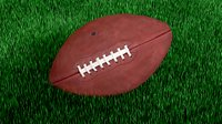 American football official game ball