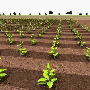 3D farm crops model