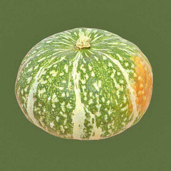 closeup kabocha squash pumpkin model