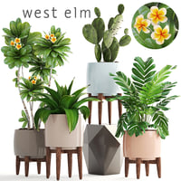 3D plants pots west model