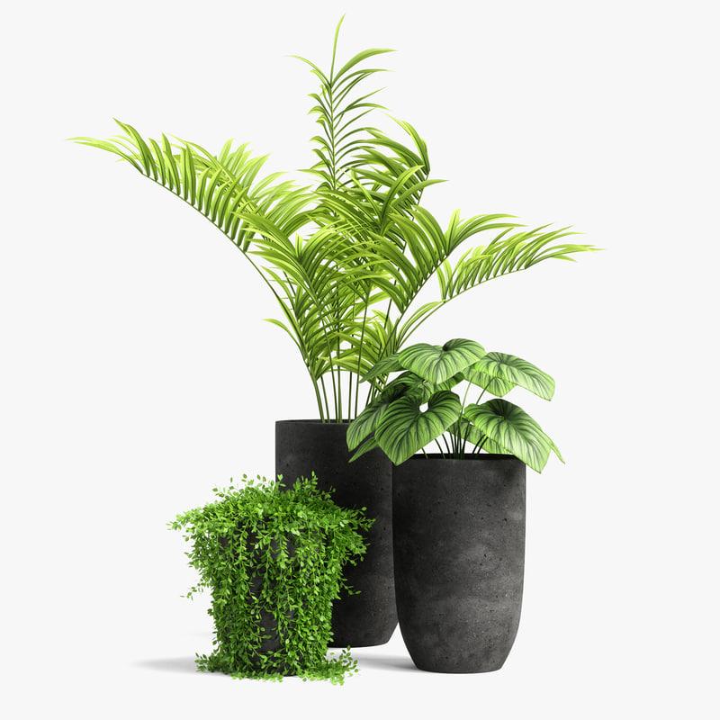 3D plants set 03