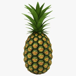 realistic pineapple color 2 model