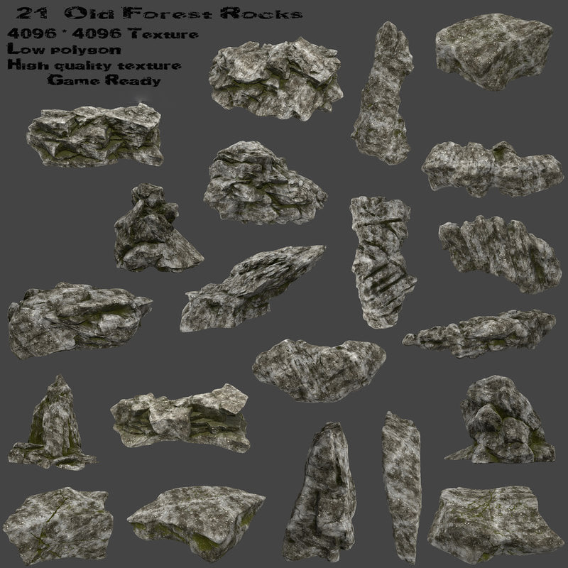 rock old forest 3D model
