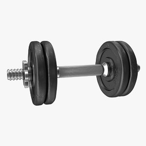 max dumbbell handle weight