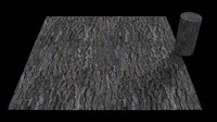 pinus pinea pine bark seamless