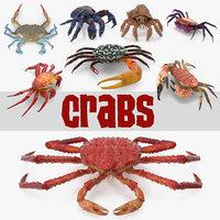 crabs 3 3D model