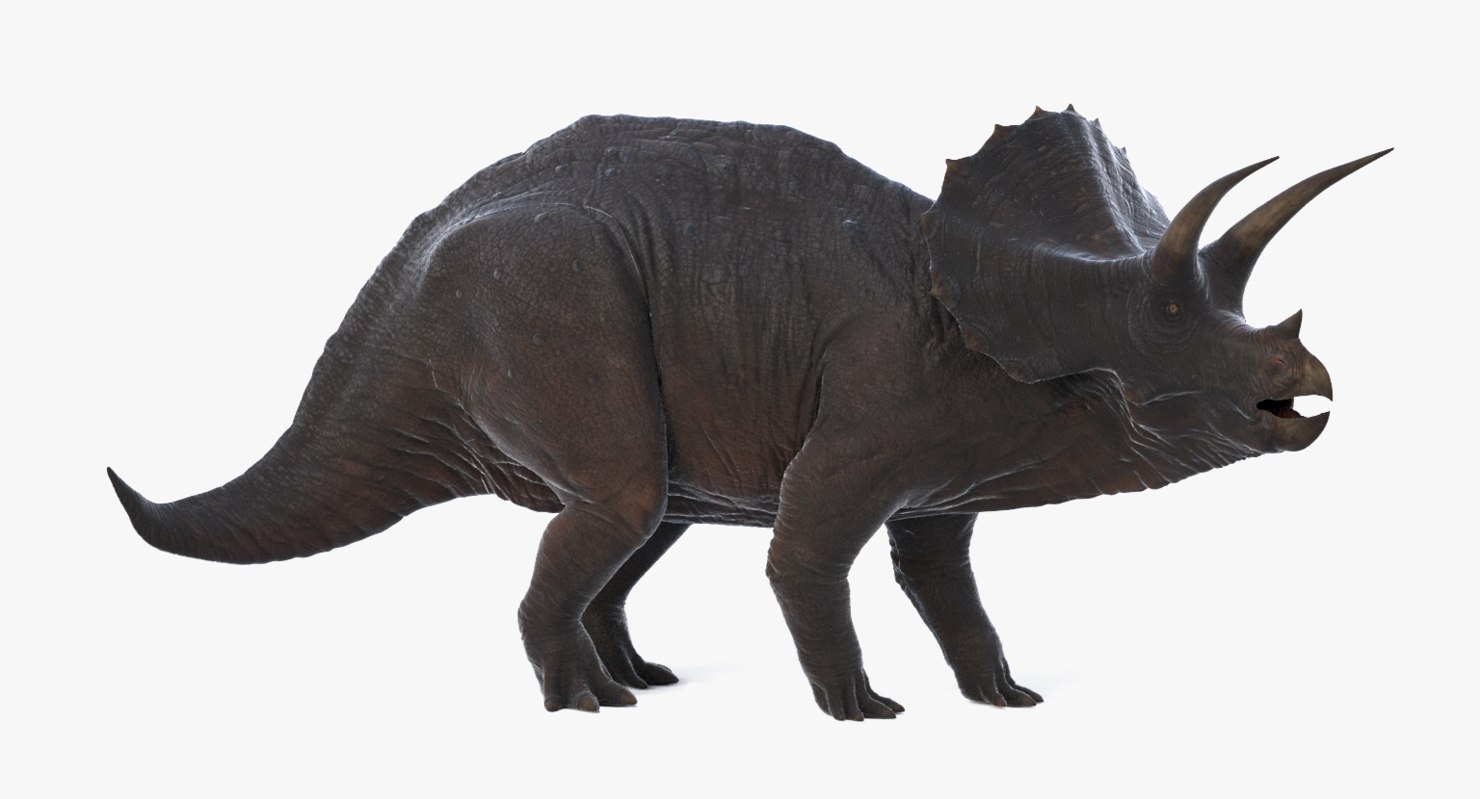 max realistic triceratops rigged