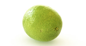 3dsmax lime