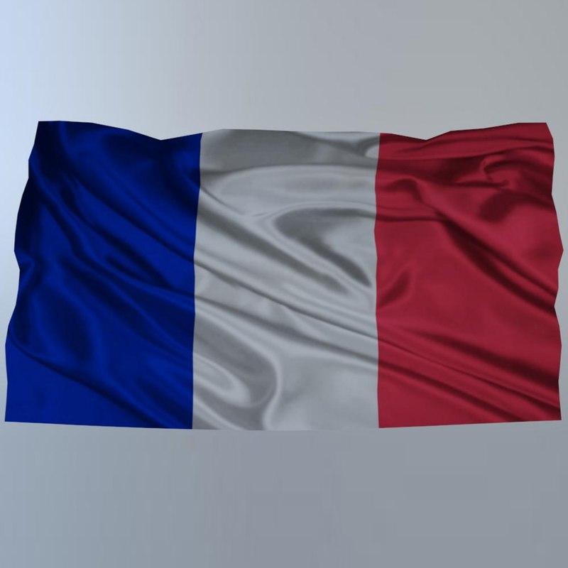 3D french flag model