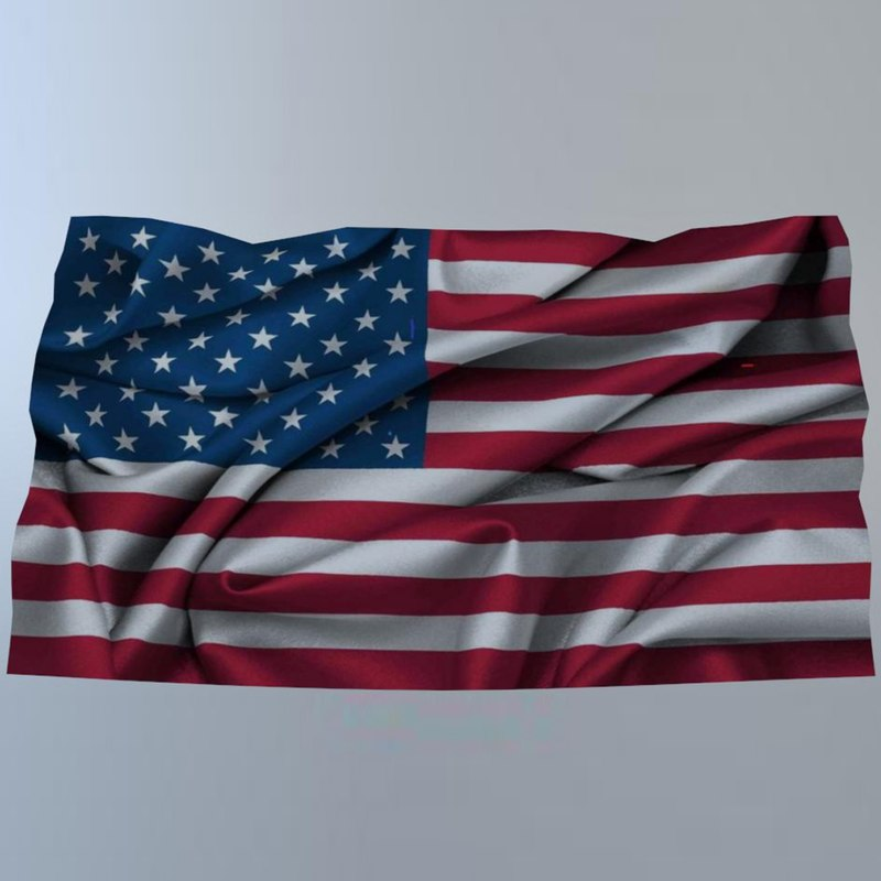 usa flag model