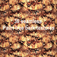 Palm Tree Bark Collection BoHbg