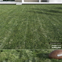 realistic mowed lawn grass 3D model